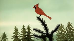 11-le-cardinal